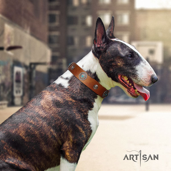 Bull Terrier easy wearing dog collar of best quality genuine leather