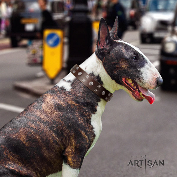 Bull Terrier easy wearing dog collar of awesome quality genuine leather