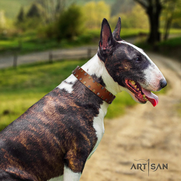 Bull Terrier inimitable natural genuine leather dog collar with embellishments