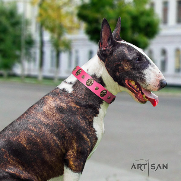 Bull Terrier adorned leather dog collar with embellishments