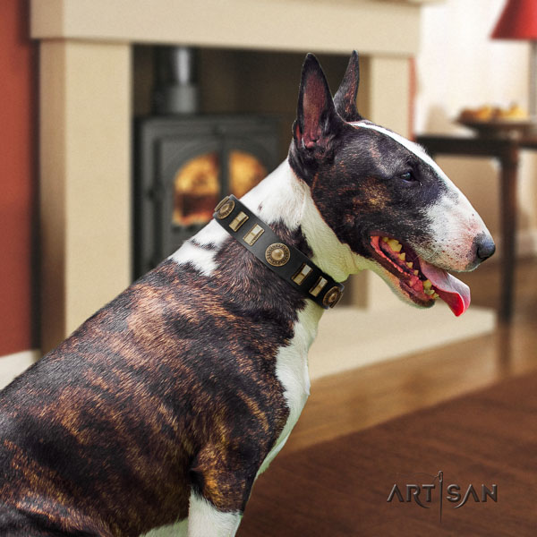 Bull Terrier adorned leather dog collar with studs