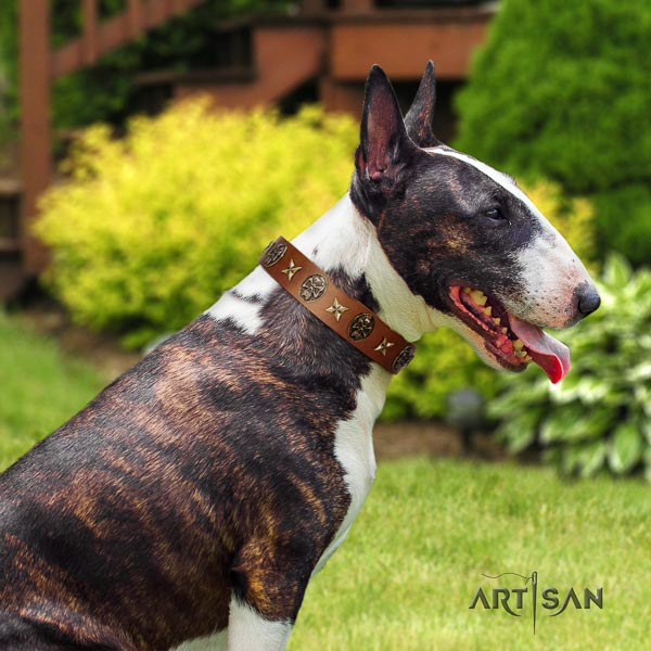 Bull Terrier adjustable full grain natural leather dog collar with adornments