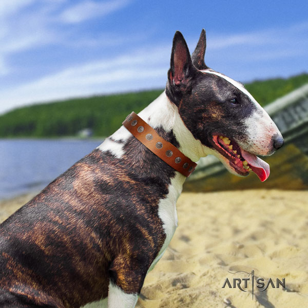 Bull Terrier handy use dog collar of awesome quality natural leather