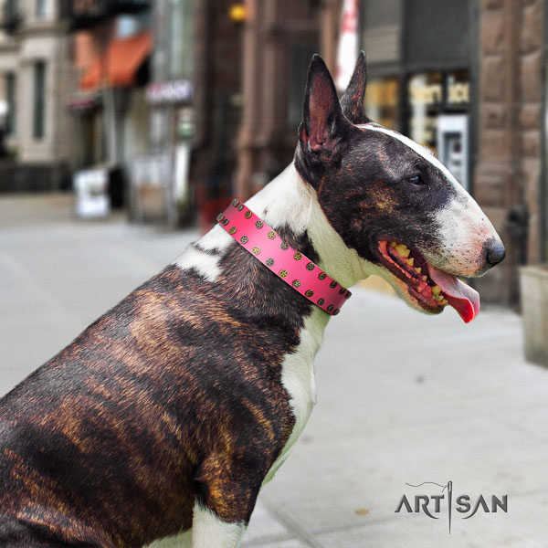 Bull Terrier inimitable full grain leather dog collar with embellishments