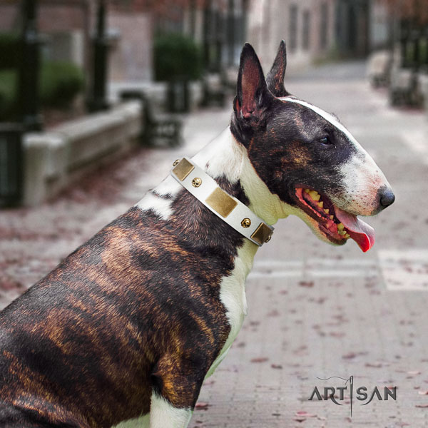 Bull Terrier easy wearing dog collar of incredible quality genuine leather