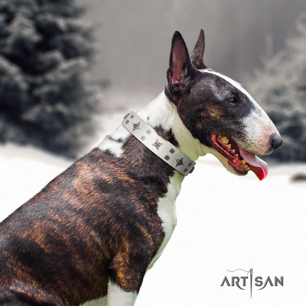Bull Terrier everyday use dog collar of exceptional quality natural leather