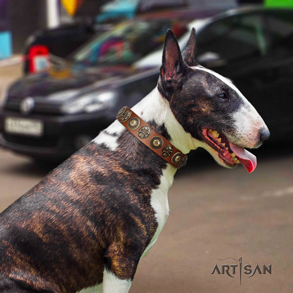 Bull Terrier unique natural genuine leather dog collar with decorations