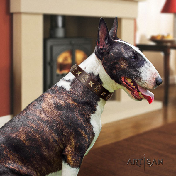 Bull Terrier easy adjustable full grain natural leather dog collar with embellishments