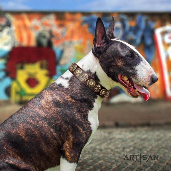 Bull Terrier exceptional genuine leather dog collar with studs