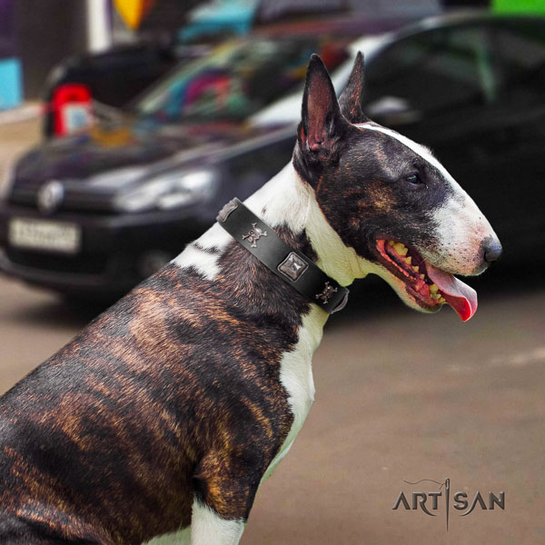 Bull Terrier everyday walking dog collar of top notch quality leather