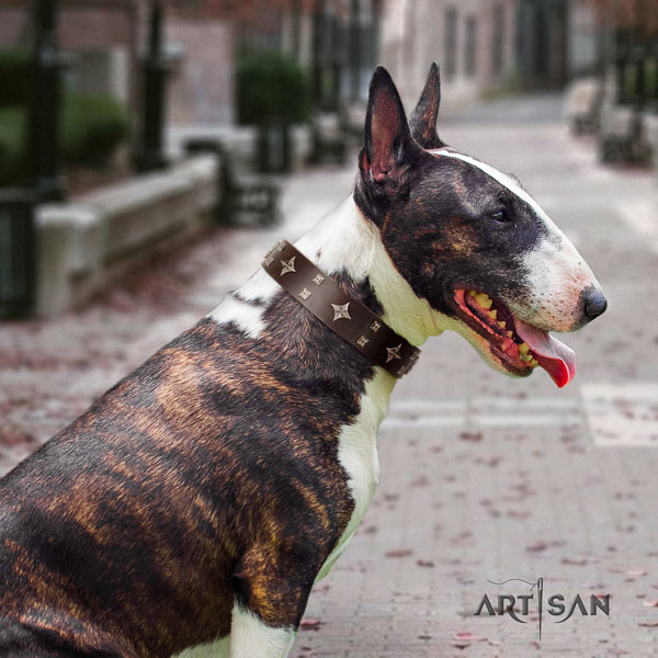 Bull Terrier basic training dog collar of top quality genuine leather