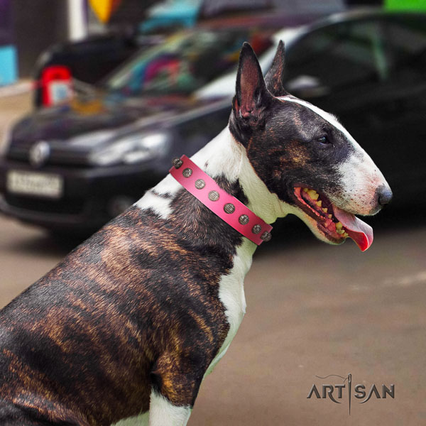 Bull Terrier stylish walking dog collar of top quality leather