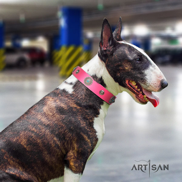 Bull Terrier everyday walking dog collar of top quality leather