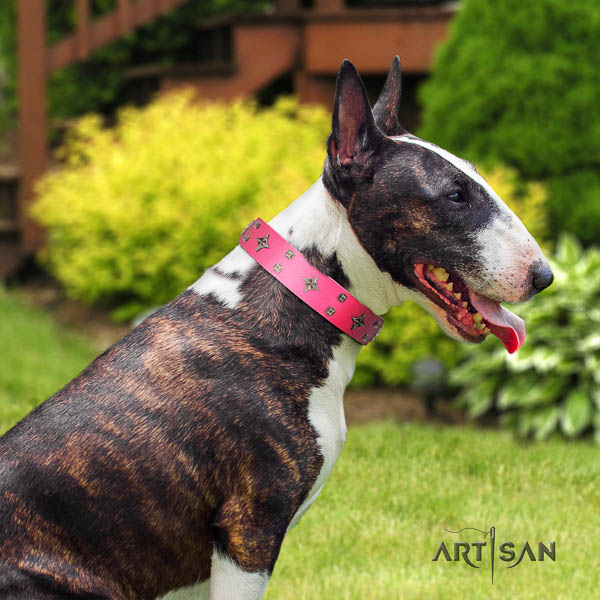 Bull Terrier easy wearing dog collar of remarkable quality natural leather