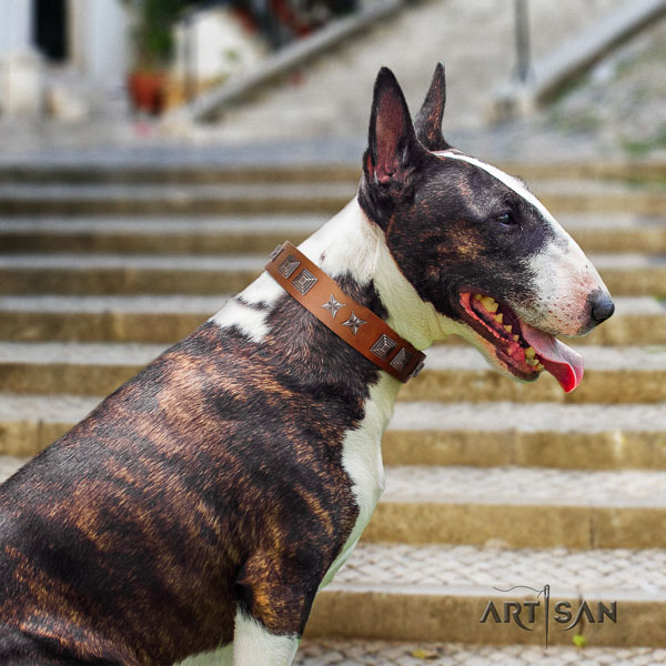 Bull Terrier daily use dog collar of remarkable quality natural leather