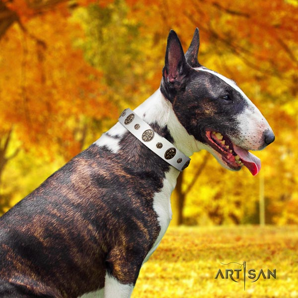 Bull Terrier adorned genuine leather dog collar with decorations