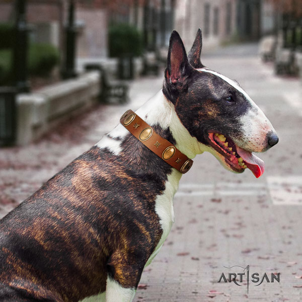 Bull Terrier handy use dog collar of designer leather