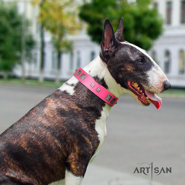 Bull Terrier daily use dog collar of comfortable natural leather