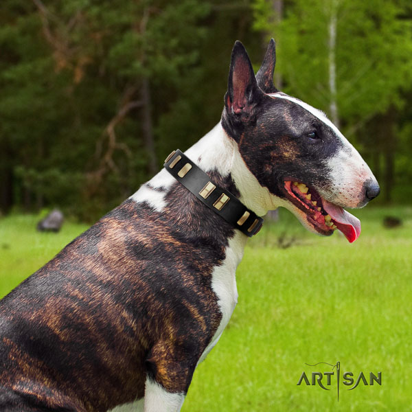 Bull Terrier decorated leather dog collar with embellishments