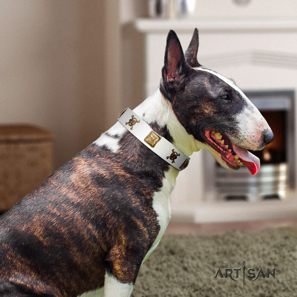 Bull Terrier extraordinary full grain natural leather dog collar with embellishments