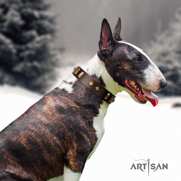 Bull Terrier trendy genuine leather dog collar with decorations
