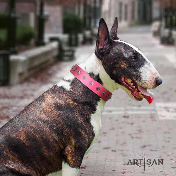 Bull Terrier everyday use dog collar of top notch quality natural leather