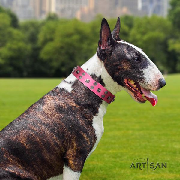 Bull Terrier everyday use dog collar of best quality genuine leather