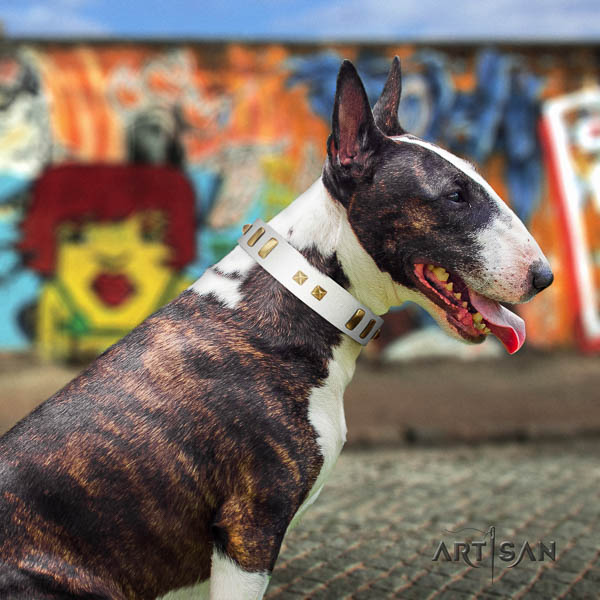 Bull Terrier stylish walking dog collar of top quality genuine leather