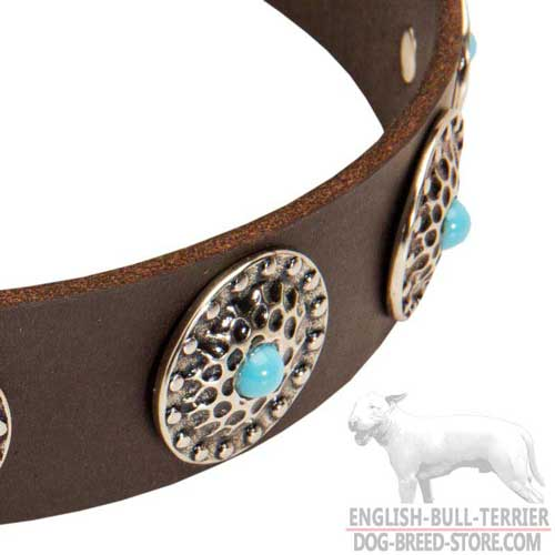 Nickel Circles with Blue Stones on Fancy Studded Leather Dog Collar