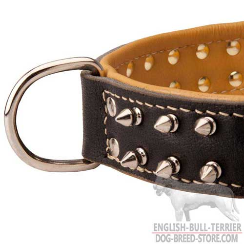 D-Ring On Padded Leather Dog Collar of Spiked Design
