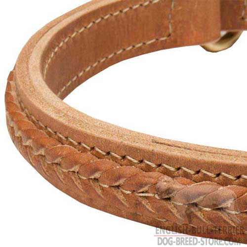 Stylish Braids on Soft Bull Terrier Choke Collar