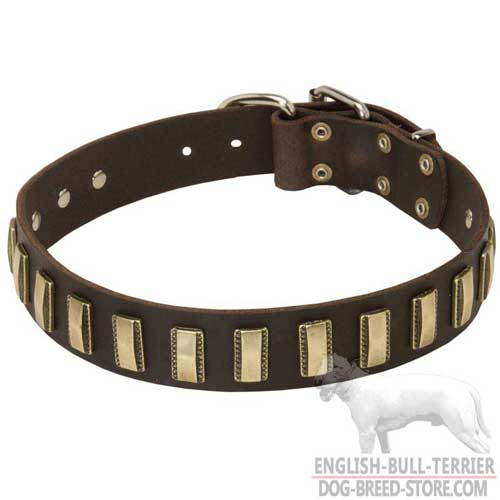 Wide Designer Leather Dog Collar Decorated With Brass Plates