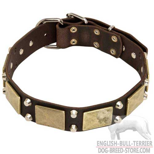 Fashion Studded Leather Bull Terrier Collar for Everyday Walking your Dog