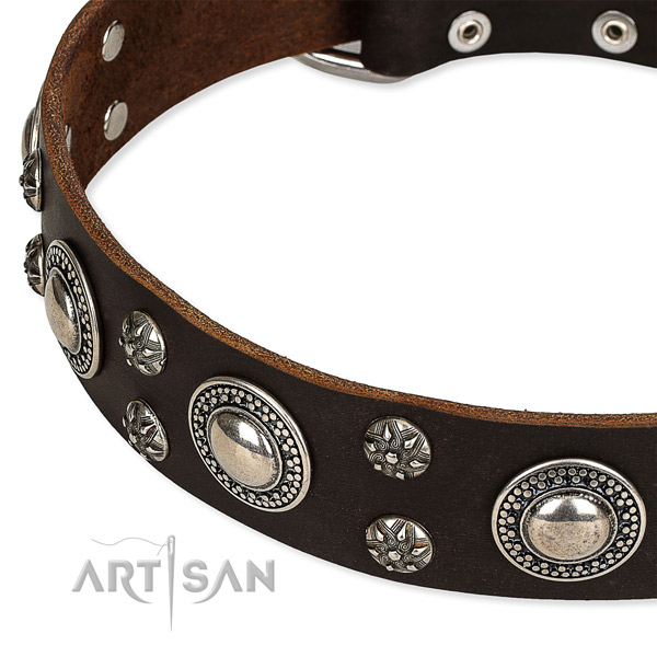 Easy to use leather dog collar with almost unbreakable rust-proof buckle