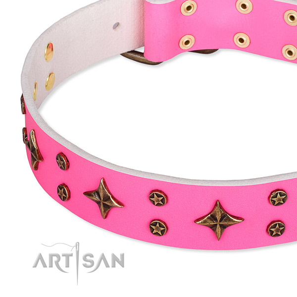Full grain natural leather dog collar with inimitable adornments