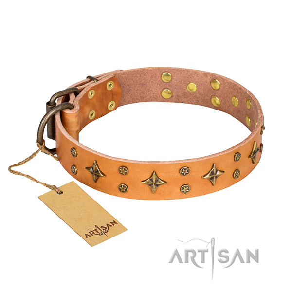 Fashionable leather dog collar for handy use