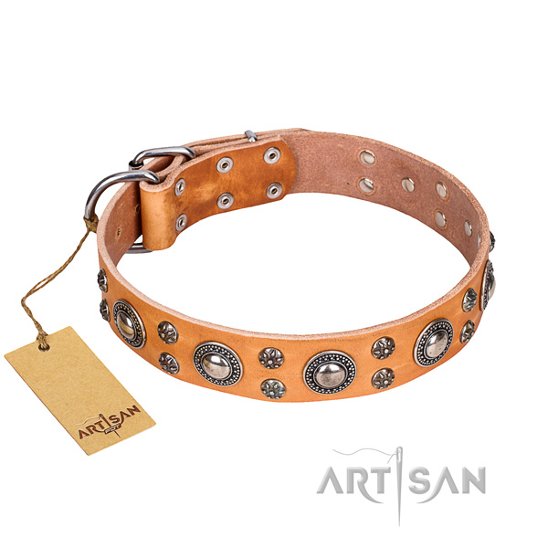 Stunning natural genuine leather dog collar for everyday walking