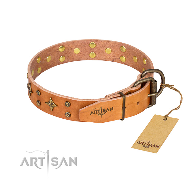 Daily walking genuine leather collar with adornments for your pet
