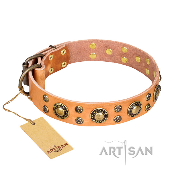 Unusual natural genuine leather dog collar for everyday walking