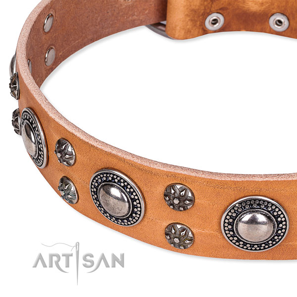 Everyday use full grain leather collar with durable buckle and D-ring