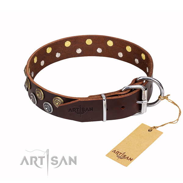 Daily use full grain leather collar with studs for your four-legged friend