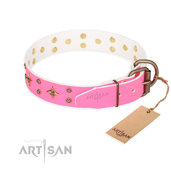 Walking full grain natural leather collar with embellishments for your doggie