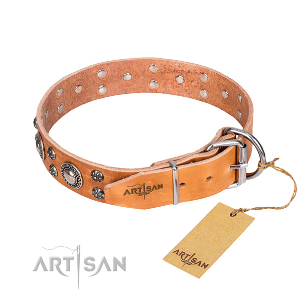 Handy use leather collar with embellishments for your canine