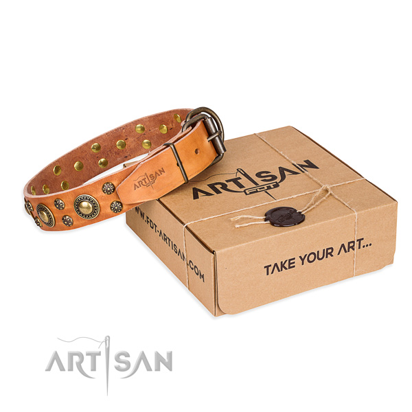Full grain natural leather dog collar with embellishments for walking