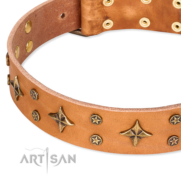 Full grain genuine leather dog collar with significant decorations