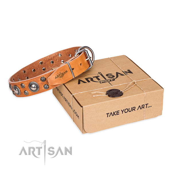 Awesome full grain leather dog collar for daily use