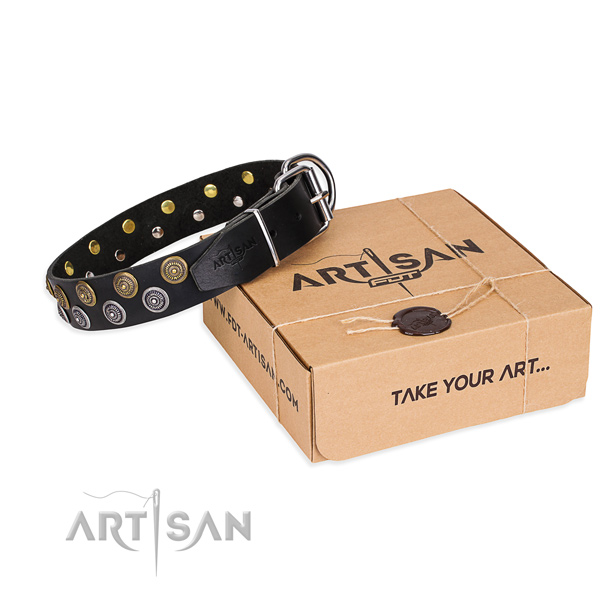 Full grain leather dog collar with embellishments for everyday use