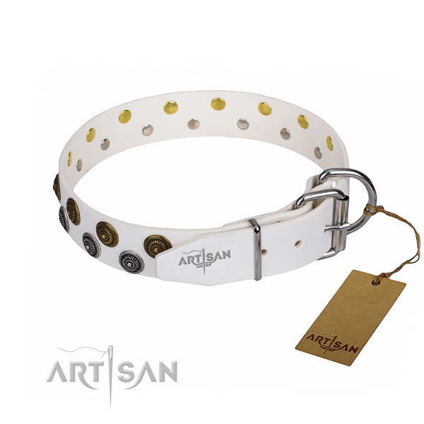 Daily walking full grain leather collar with adornments for your doggie