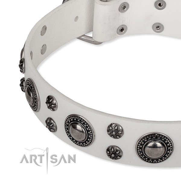 Handy use leather collar with durable buckle and D-ring