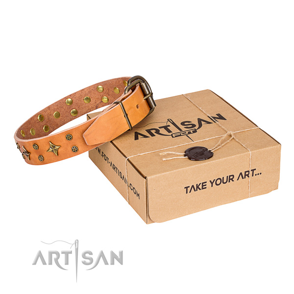 Decorated full grain genuine leather dog collar for stylish walks